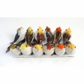 Пташки M607