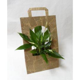 Пакет для квітів President 230*110*350