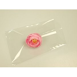 Packages PP 100pcs 10*15cm.transparent