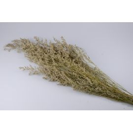 Dry natural bouquet