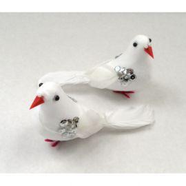 Pigeons SH9128