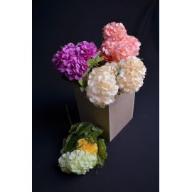Bouquet of 7 pcs. bulldogs 35 cm.