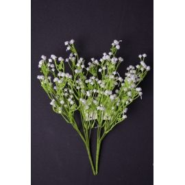 The branch of gypsophila is 30 cm.