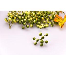 Ягоди зелені гроно