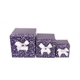 "A set of boxes of ""Stripes"" (blue) 3 pcs"