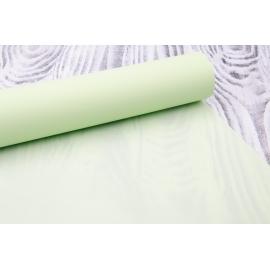Плівка матова 0.7×10 Вінтаж салатова 302