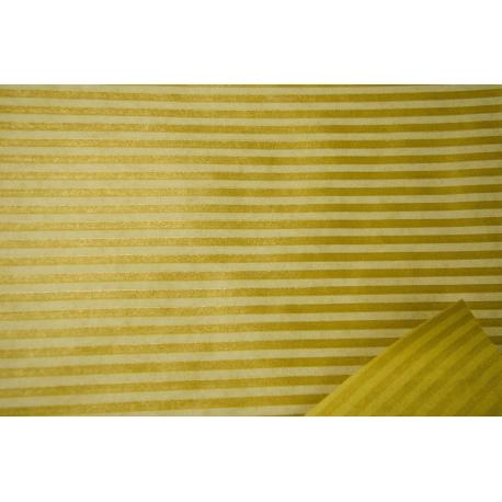 Paper Kraft President Strips colored