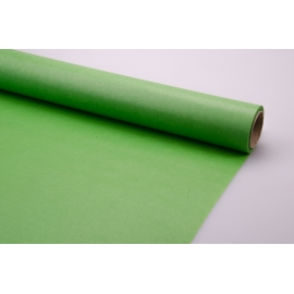 Paper Crack green 0.5 × 20 m.