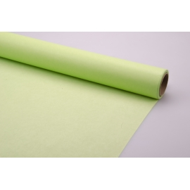 Paper green0.5 ×20