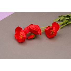 The branch of poppy is 60 cm