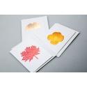 """Листівка з конвертом """"Меморія"""" 9.3*12,5 см 1901"""