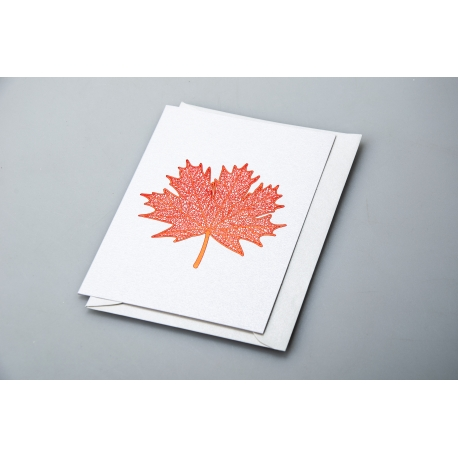 "Postcard with envelope ""Memorial"" 9.3*12,5 см 1901"