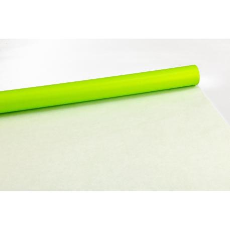 Бумага двусторонняя 0.7 * 10м Салатовый + Белый 301-101