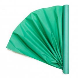 Папір для квітів калька (30г) President 0,5*15м М'ятний 309