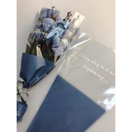 Packages for SB.DOZHD-105 Carolina Blue flowers
