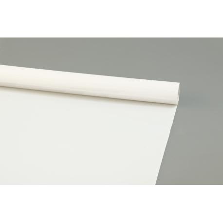 Matte film PRESIDENT 0,7 * 10m White 35