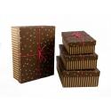 Набір коробок для подарунків з 4 шт NP-14