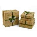 Набір коробок для подарунків з 3 шт NC06-15