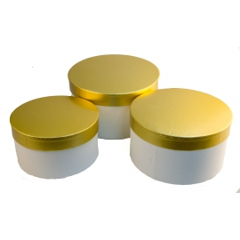 Набір тубусів із золотою кришкою білі 3 шт 144