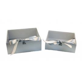 Набір коробок з 2 шт з проз. кришкою W7967 срібні