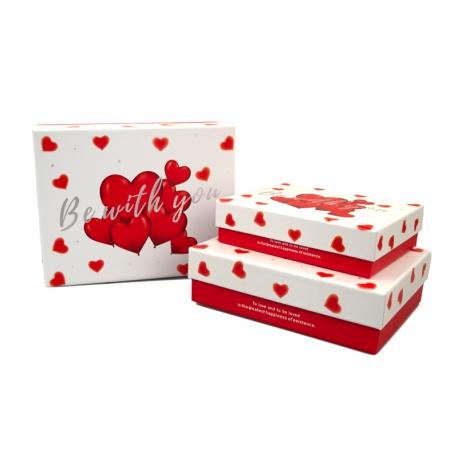 Набір коробок для подарунків з 3 шт C210-38