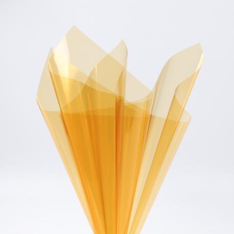 Плева прозрачная в листах 60х60см P.XHXL-062 Gold