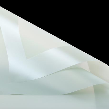 Плівка матова в листах кайма P.PPQ 06 Pastel Green