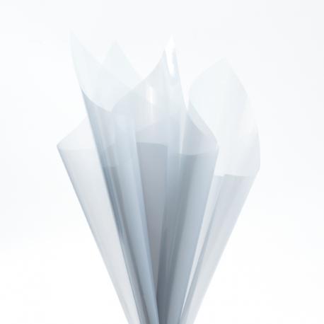 Пленка прозрачная в листах 60х60см P.XHXL-125 Bluebell