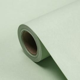 Wrapping Paper 58cm х 8y P.FHXL-085 Pastel Green