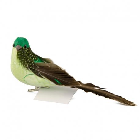 Птичка зеленая