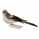 Пташка сіра
