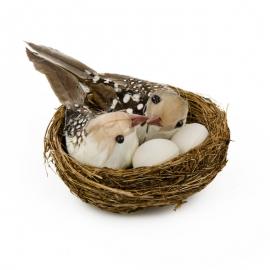 Пара птиц в гнезде