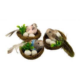 Пташка в гнізді з яйцями в асортименті