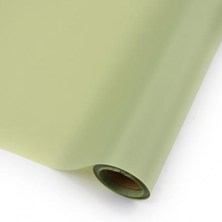 Пленка матовая в рулоне 60см х 10ярд P.HX.0600-081 Lime Juice