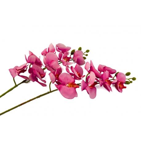 Ветка Орхидеи Малиновая