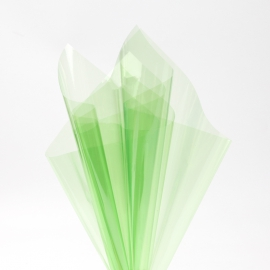 The hymen is transparent in sheets of 60x60 cm P.XHXL-095 Green