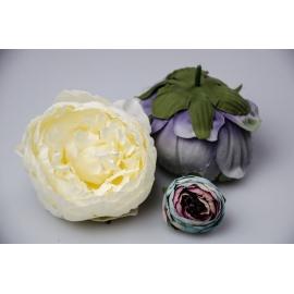 Головки цветов пиона белые