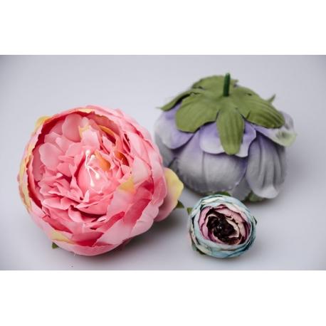Pink peony flower heads