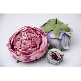 Головки цветов пиона пурпурные