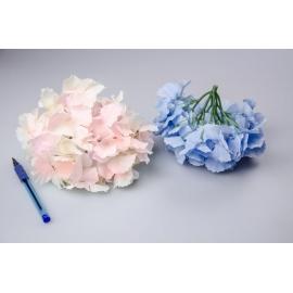 Головки цветов гортензии розовые