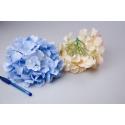 Головки цветов гортензии голубые