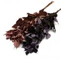 Сухоцвет Малина цветная в пачках