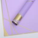 """Пленка """"Вектор"""" P.HX 033 Lilac"""