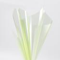 Пленка прозрачная в листах 60х60см P.XHXL-094 Lime Juice