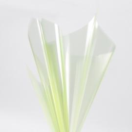 Плівка прозора в листах 60х60см P.XHXL-094 Lime Juice