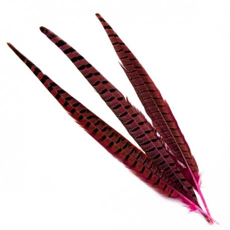 Pheasant feathers crimson