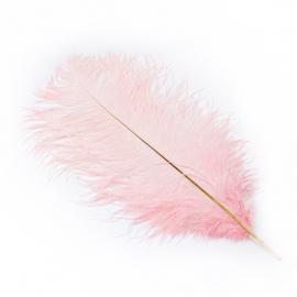 Пір'я страусине рожеве 40-45см