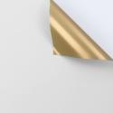Пленка матовая двосторонняя 60 × 60 см 116 White + Gold
