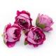 Flower heads rose peony purple