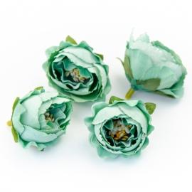 Головки цветов роза пионовидная мятная